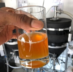 Brew and Feed Improvisation Pale Ale